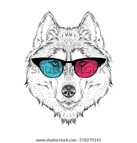 Portrait of the husky in the colored glasses. Think different. Vector illustration.