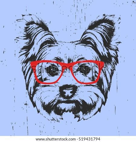 portrait of yorkshire terrier...