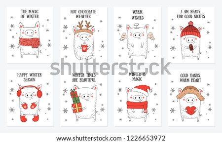 Postcard collection. New 2019 Year posters with cute pig and winter slogan. Symbol of the year in the Chinese calendar. Vector cartoon isolated illustration. Year of yellow pig.