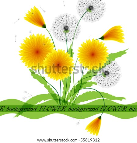 Postcard from dandelions. Vector format 10 eps