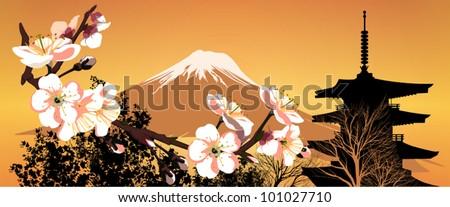 postcard sakura japanese