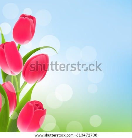 postcard with tulips with