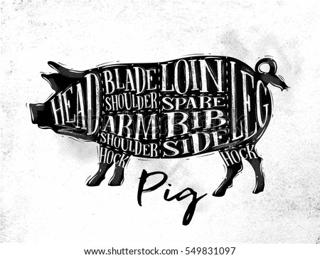 poster pig pork cutting scheme...