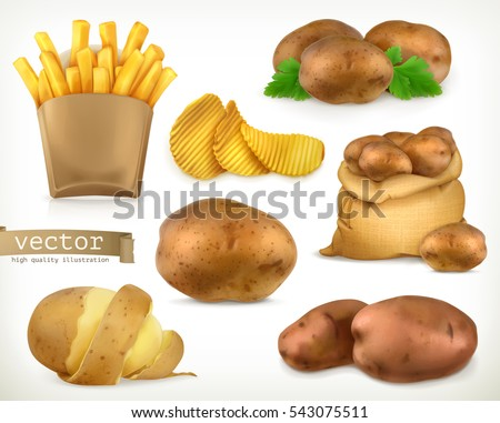 potato and fry chips vegetable