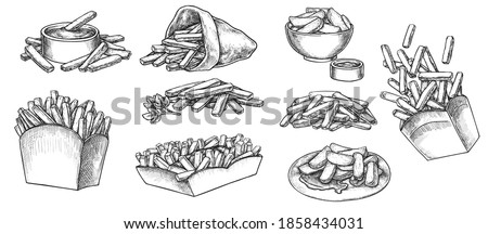 Potato french fries street fastfood menu hand drawn sketch. Crispy chip food in paper box or craft paper cone, on plate, in dip bowl, dipped in sauce vector illustration isolated on white background