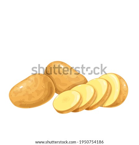 Potatoes vector illustration. Raw potato whole root crops and sliced pieces. Foto stock ©