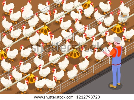 Poultry isometric background with staff member on chicken farm controlling feeding of birds vector illustration