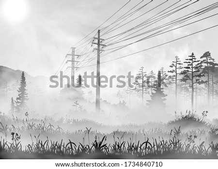 power line in countryside
