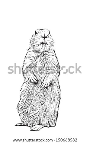 prairie dog eps vector