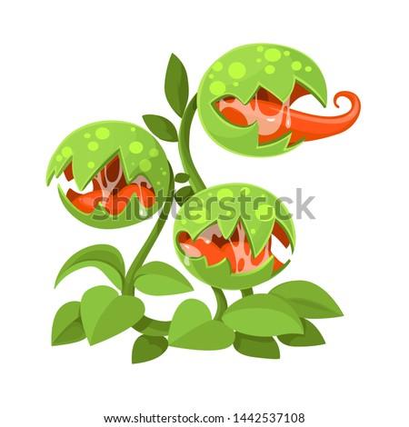 predatory plant giant venus