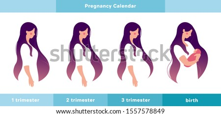 Pregnancy calendar, main stages. A pregnant woman in the 1st, 2nd, 3rd trimester of pregnancy and with a newborn in her arms. Info graphic with a cute girl. Flat stock vector illustration isolated on