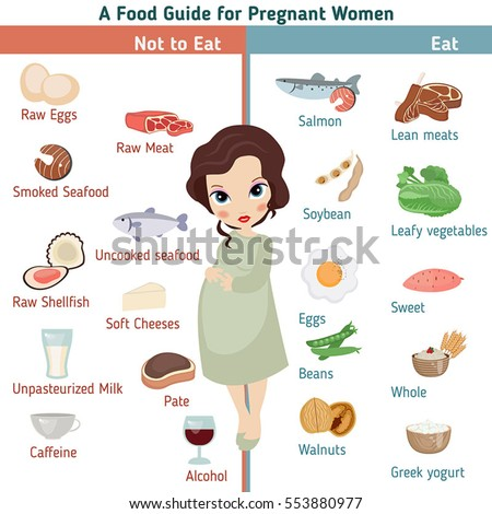pregnant woman diet infographic