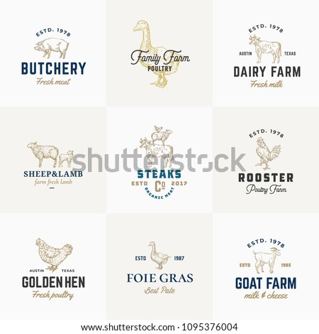 Premium Quality Retro Cattle and Poultry Vector Signs or Logo Templates Set. Hand Drawn Vintage Domestic Animals and Birds Sketches with Classy Typography, Pig, Cow, Chicken, etc. Isolated.