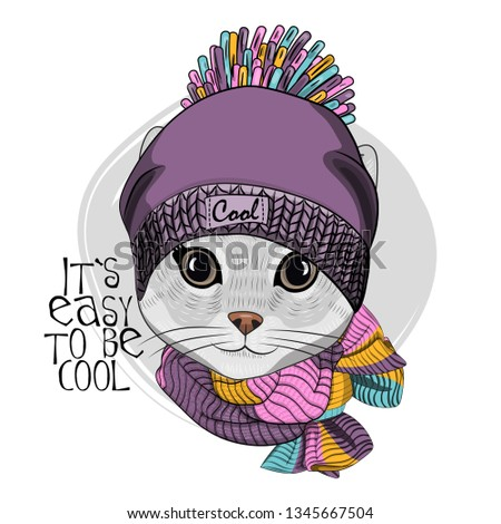 15475e3cf01 Pretty gray cat with violet hat and knitted scarf. Hand drawn illustration  of dressed kitten