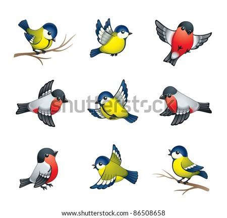 pretty winter birds  tits and