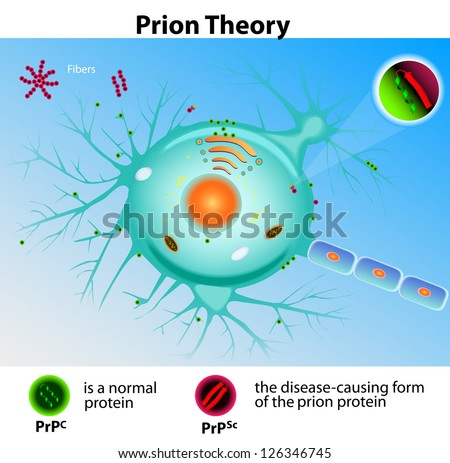 Prion Theory. Mad Cow Disease ストックフォト ©