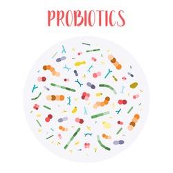 Probiotics. Lactic acid bacteria. Good bacteria and microorganisms for gut and intestinal flora health. Microbiome. Bifidobacterium, lactobacillus,  lactococcus, thermophilus streptococcus. Vector set