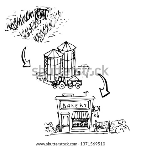 Production chain for the production of bread, from the field to the bakery, freehand drawing.