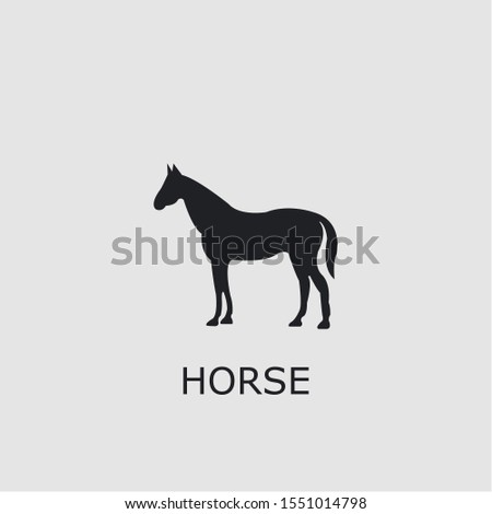professional vector horse icon