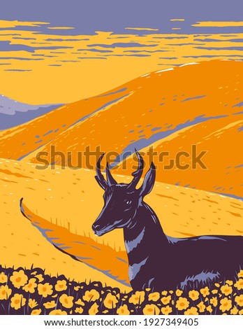 Pronghorn and Wild Flowers Growing in Native Grassland of Carrizo Plain National Monument in San Luis Obispo County California WPA Poster Art Foto stock ©