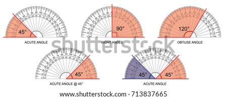 protractor - protractor actual size graduation isolated on background vector