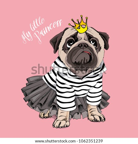 Pug Dog in a striped cardigan, in a black tutu skirt and with a gold princess crown on a pink background. Vector illustration.
