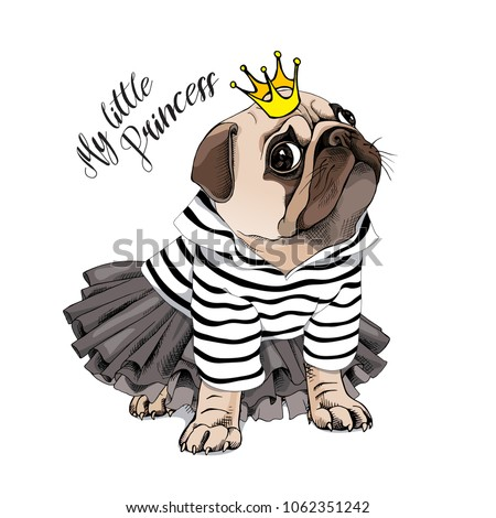 Pug Dog in a striped cardigan, in a black tutu skirt and with a gold princess crown. Vector illustration. Сток-фото ©