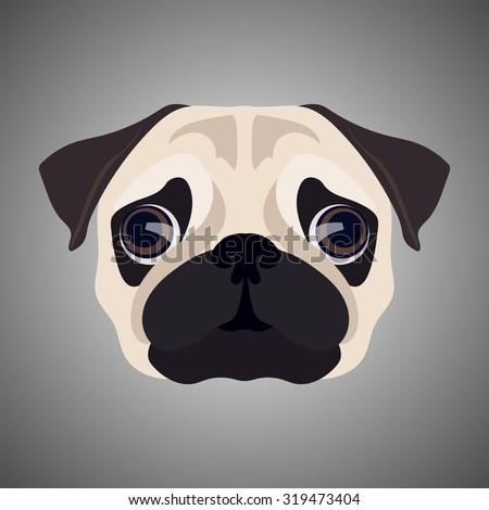 Stock Photo Pug portrait