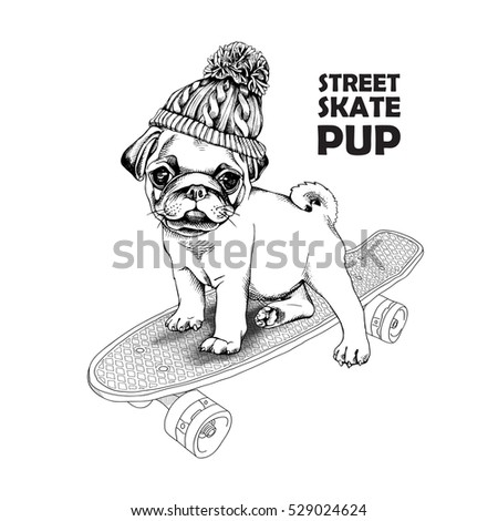 4870c1f8c85 Pug puppy in a knitted hat with pom-pom on a skateboard. Vector black
