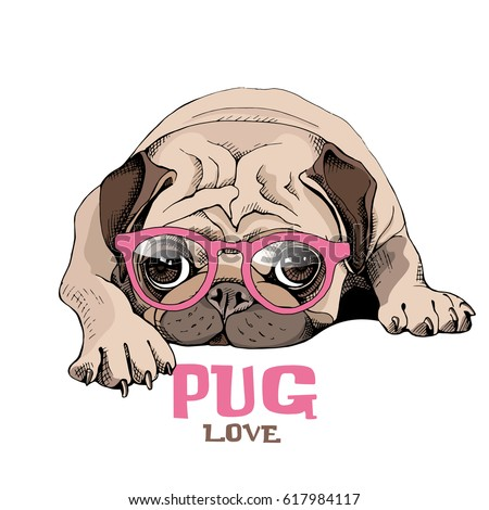 Pug Puppy in a pink glasses repose. Vector illustration.