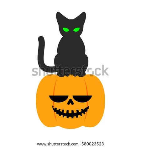 Pumpkin and black cat Halloween symbol. terrible holiday