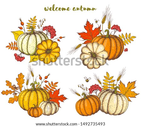 Pumpkin and fall leaves bouquet. Thanksgiving design template. Hello autumn illustration. Harvest festival. Hand drawn frame with fall leaves, pumpkin. Vector illustration