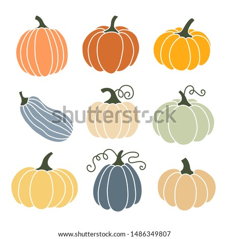 Pumpkin of various shapes and colors. Thanksgiving and Halloween Elements.