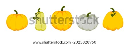 pumpkin set of 5 pieces