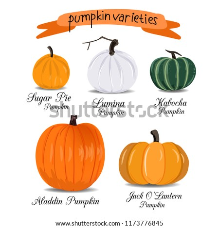Pumpkin Vector Varieties