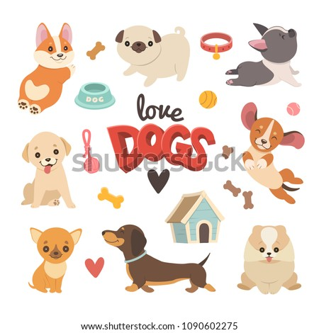 puppies collection vector