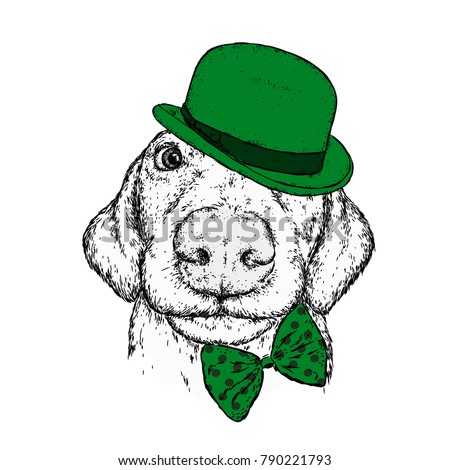Puppy in a hat, glasses and a tie. Patrick's day. Vector illustration for a postcard or a poster, print for clothes. A pedigree dog in clothes and accessories.
