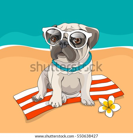 Stock Photo Puppy Pug in a glasses and with a flower on a beach background. Vector illustration.