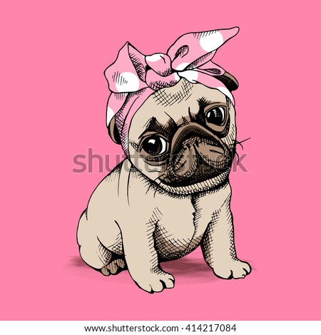 puppy pug in a headband on pink