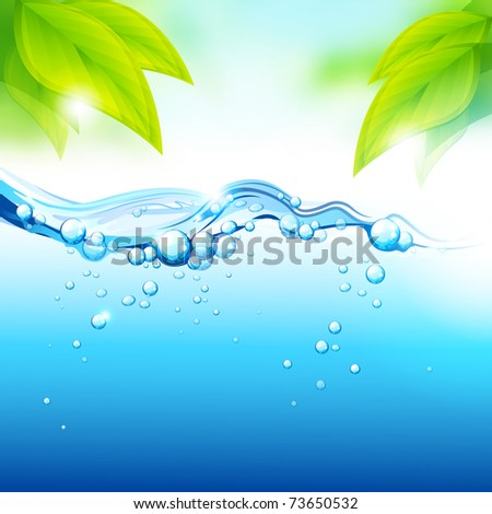 Pure Fresh Mineral Water with fresh green leaves. Vector illustration