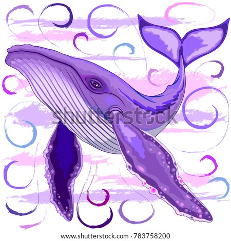 purple and pink humpback whale