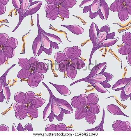 purple crocus flowers and