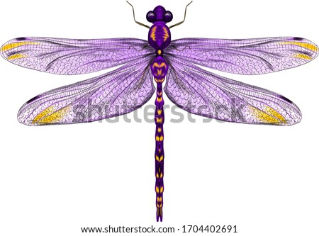 purple dragonfly with delicate