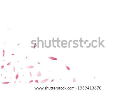 Purple Lotus Petal Vector White Background. White Spring Cherry Petal Illustration. Sakura Petal Romantic Banner. Fall Rose Petal Congratulation.