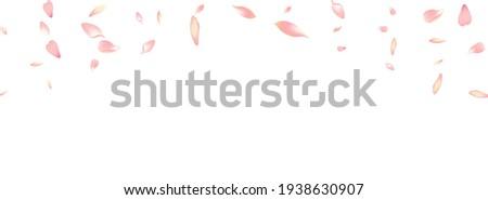 Purple Peach Petal Vector White Background. Color Wedding Cherry Petal Cover. Lotus Petal 3d Congratulation. Soft Flower Petal Backdrop.