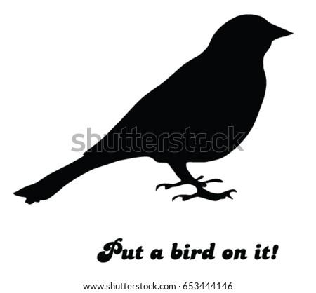 put a bird on it  animal