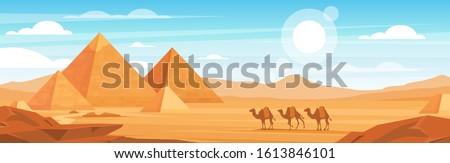 pyramids in desert flat vector