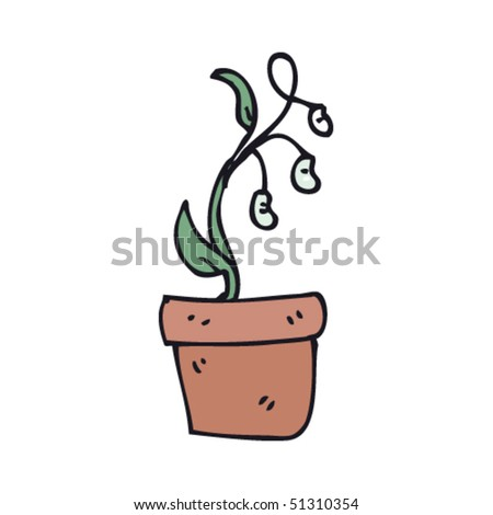 quirky drawing of a bean plant Bean Plant Drawing