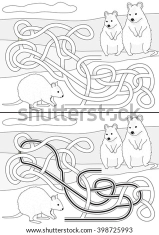 quokka maze for kids with a