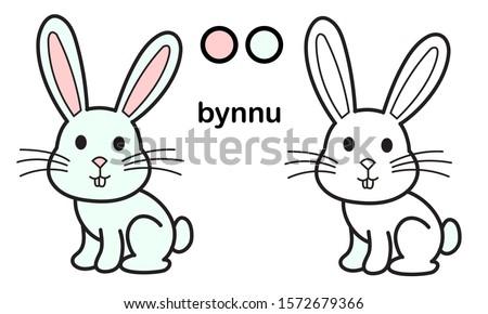 rabbit coloring book  cute
